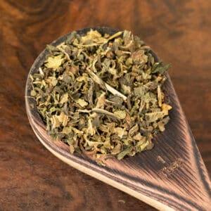 echinacea botanical tea