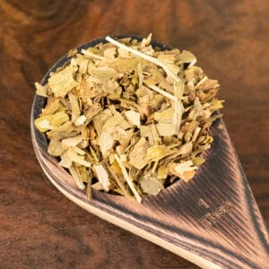 gingko botanical tea