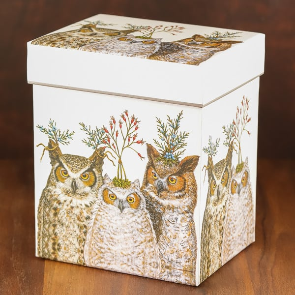 holiday hoots infuser mug box