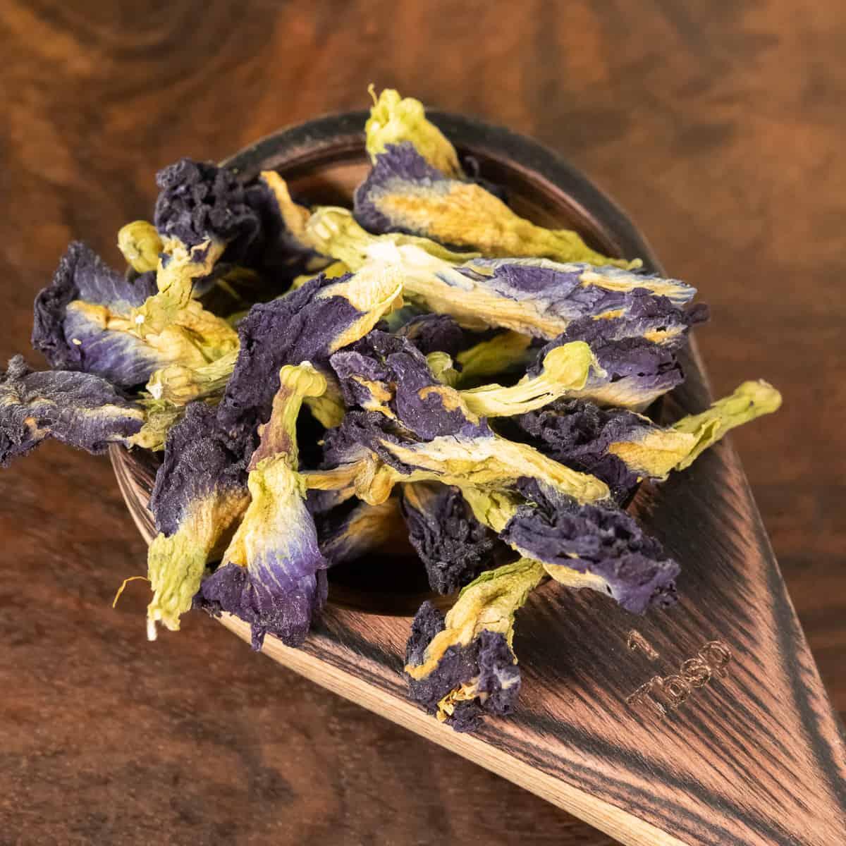 butterfly pea flowers botanical tea in spoon