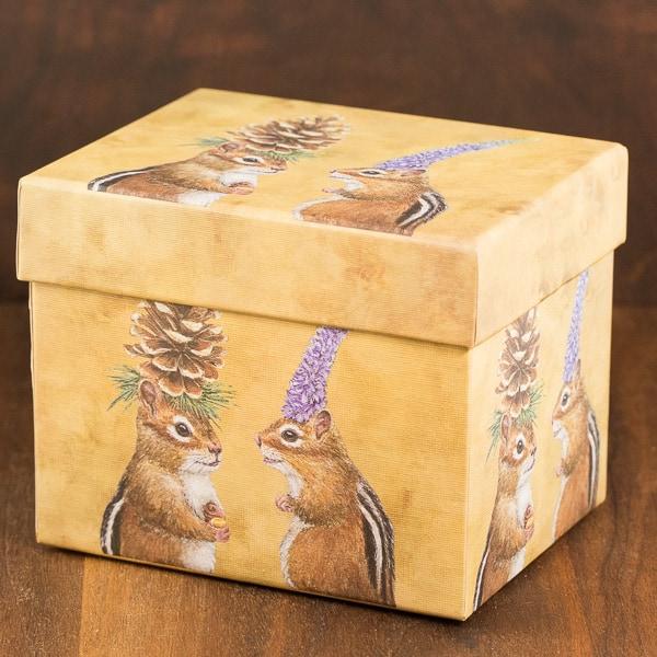 chipmunk courtship mug box