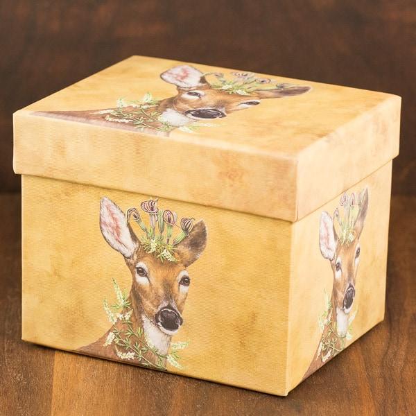 woodland princess mug box